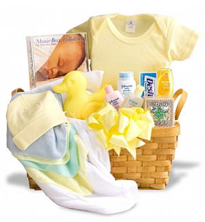 Send New Arrival Baby Basket to USA